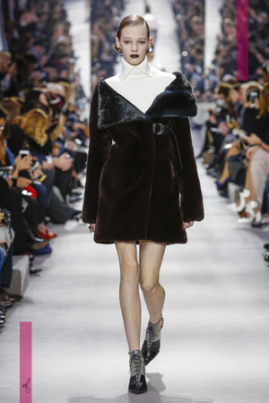 Dior Ready to Wear Fall Winter 2016 Fashion show in Paris