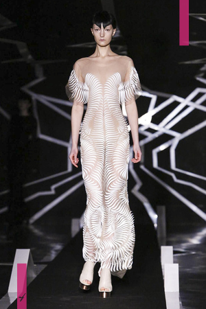 Iris Van Herpen, Couture, Spring Summer 2017 Fashion Show in Paris
